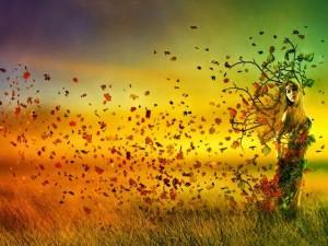 autumn let go